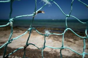 Broken Net