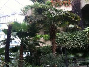The Barbican Center Garden