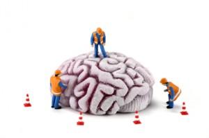 Brain Analyze